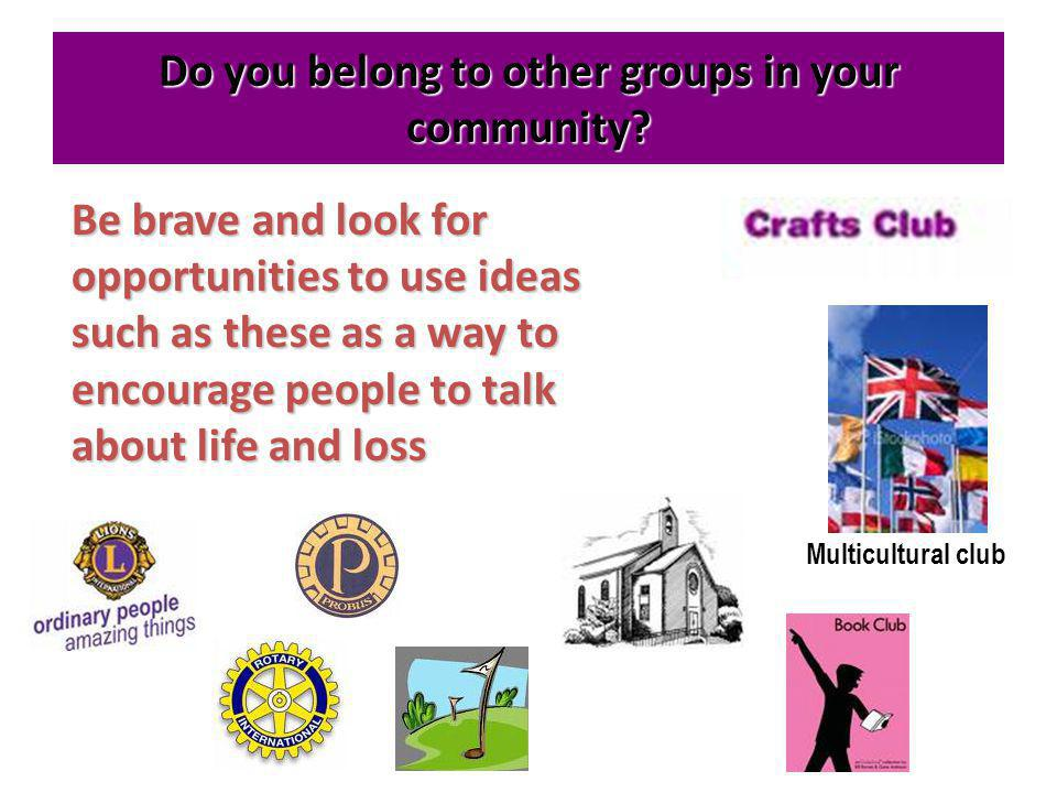 Do you belong to other groups in your community