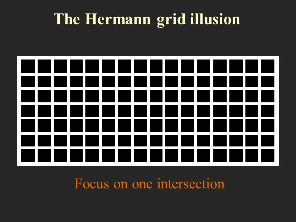 The Hermann grid illusion