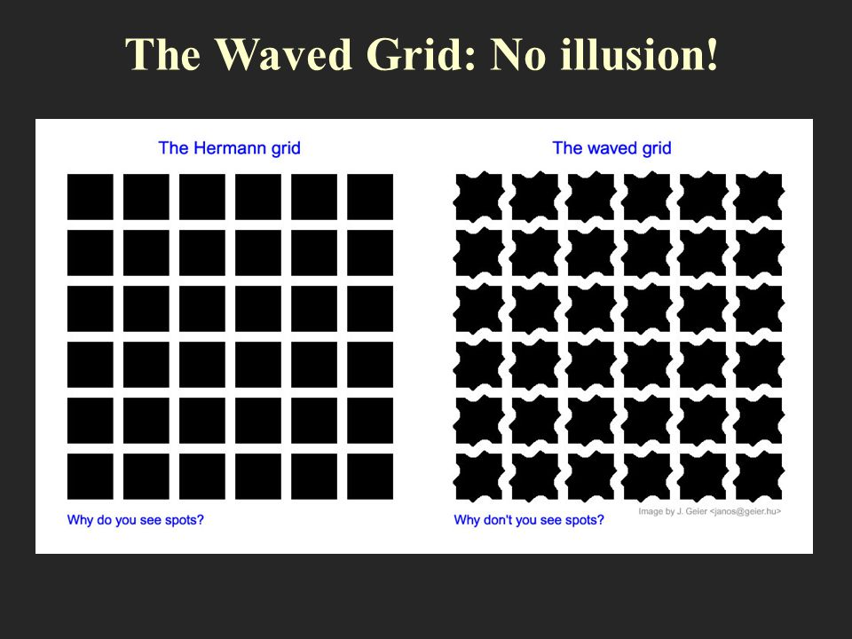 The Waved Grid: No illusion!