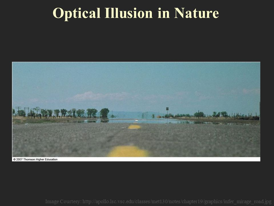 Optical Illusion in Nature