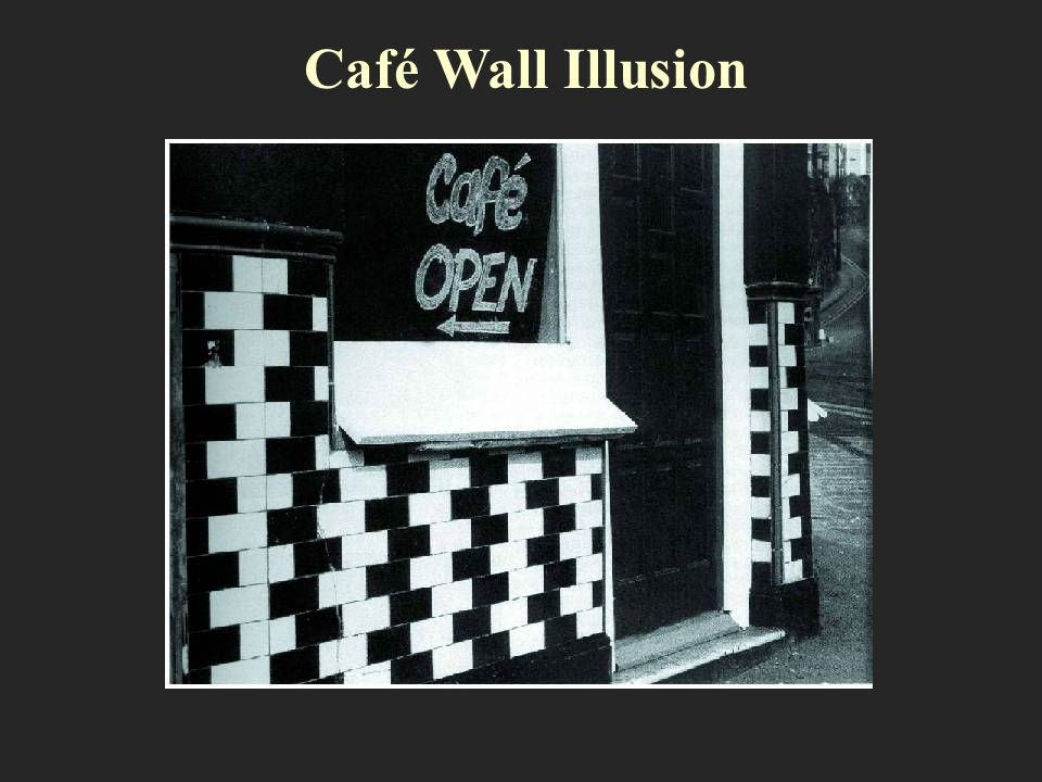 Café Wall Illusion