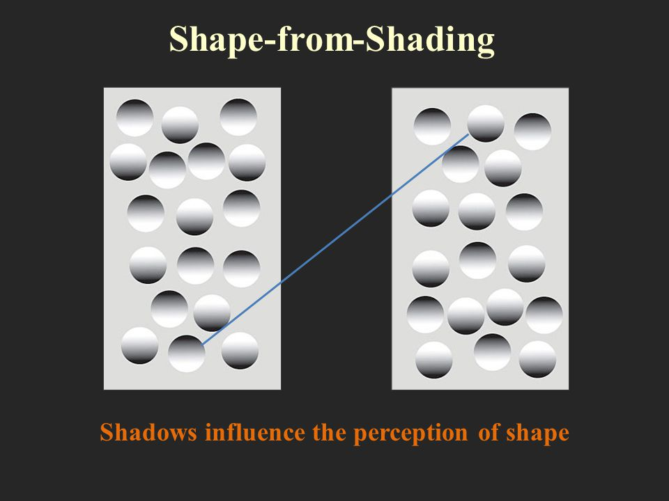Shadows influence the perception of shape