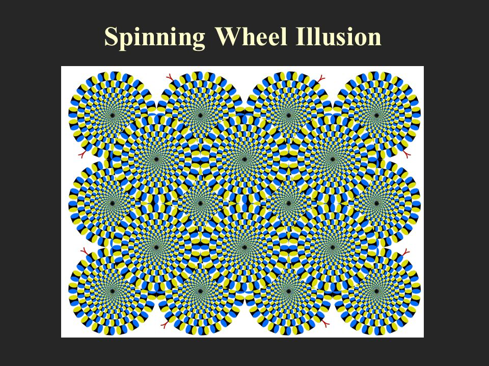 Spinning Wheel Illusion