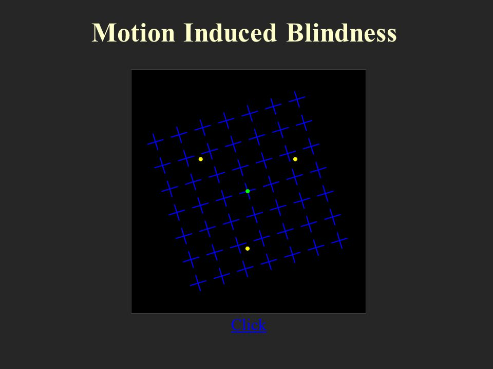 Motion Induced Blindness
