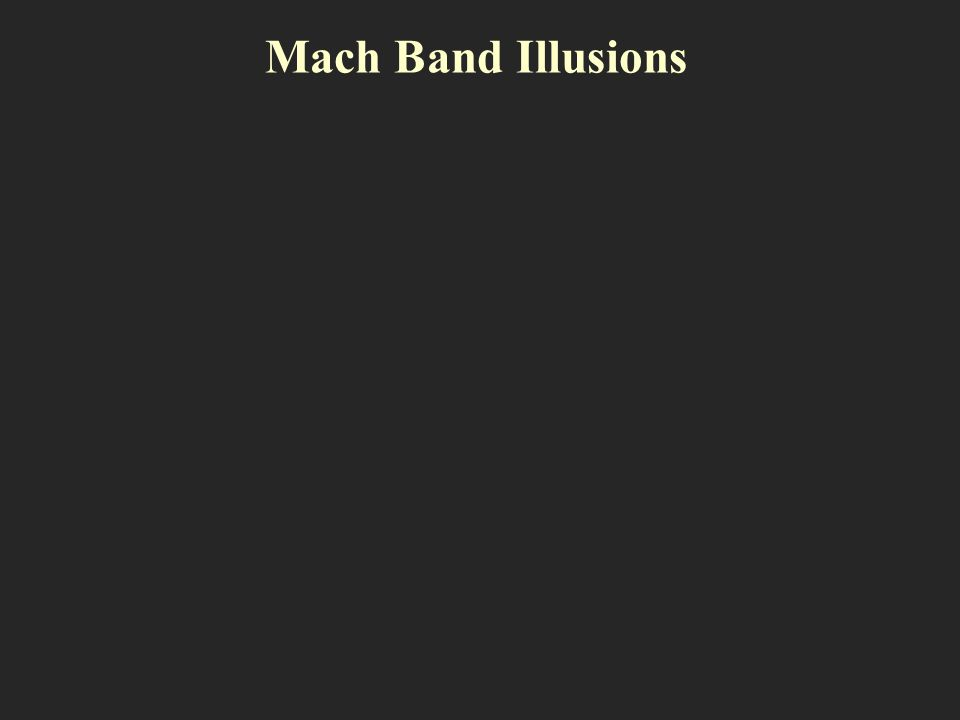 Mach Band Illusions