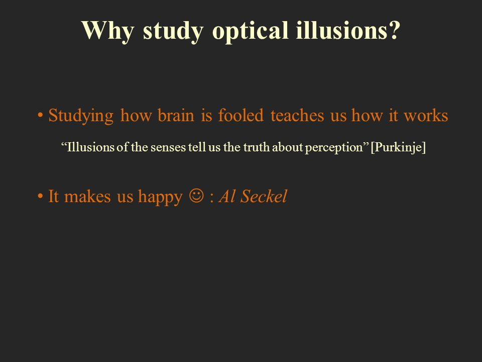 Why study optical illusions