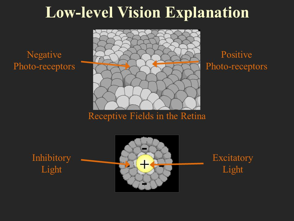 Low-level Vision Explanation