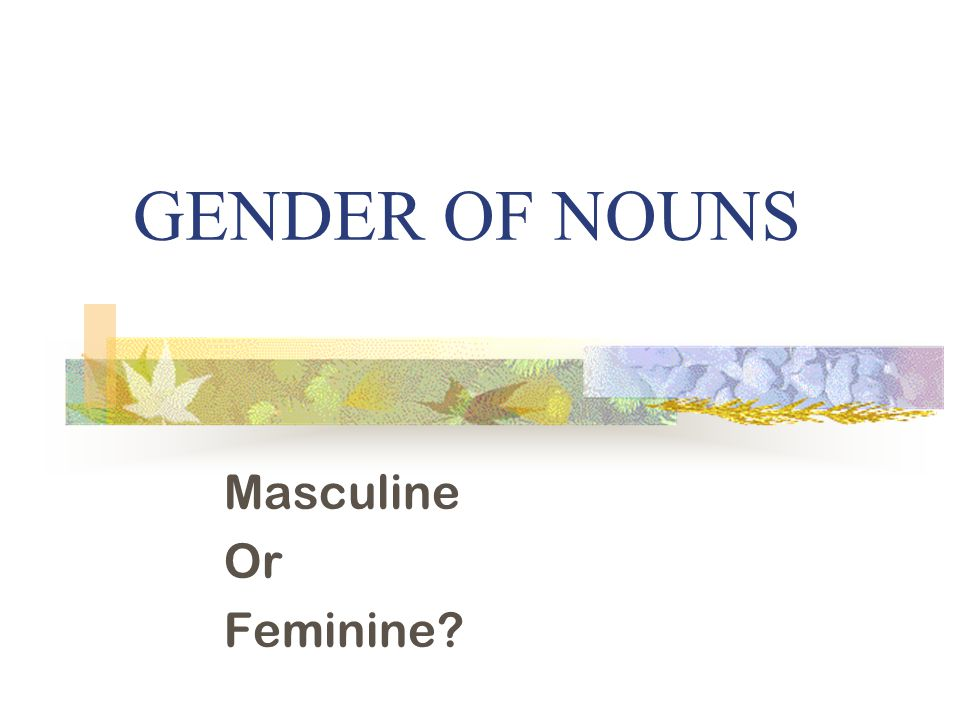 GENDER OF NOUNS Masculine Or Feminine