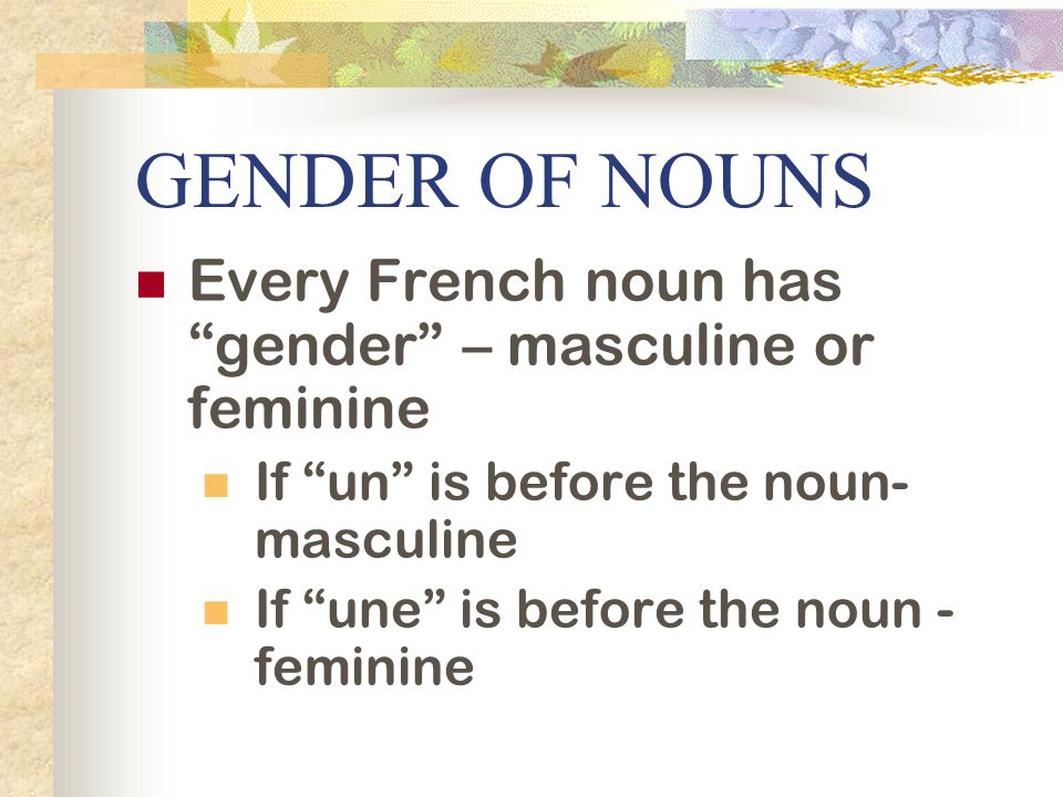 GENDER OF NOUNS Every French noun has gender – masculine or feminine