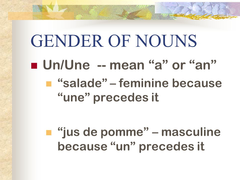 GENDER OF NOUNS Un/Une -- mean a or an