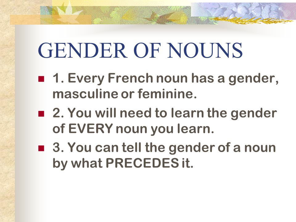 GENDER OF NOUNS 1. Every French noun has a gender, masculine or feminine. 2. You will need to learn the gender of EVERY noun you learn.