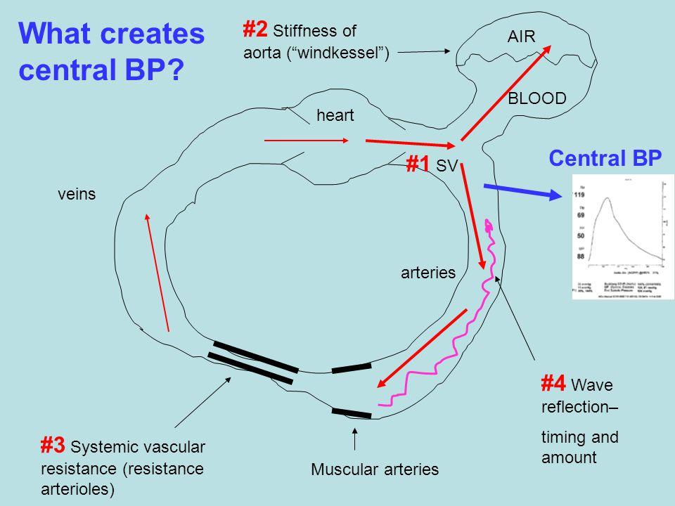 What creates central BP