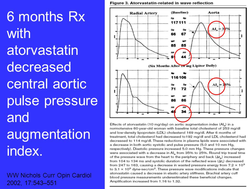 6 months Rx with atorvastatin decreased central aortic pulse pressure and augmentation index.