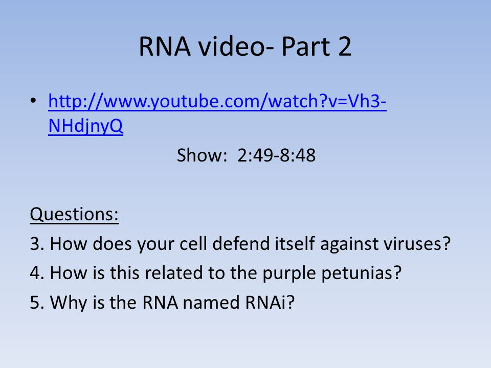 RNA video- Part 2 http://www.youtube.com/watch v=Vh3-NHdjnyQ