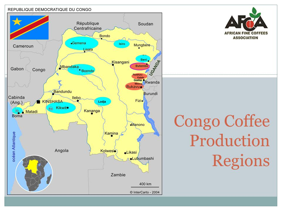 Congo Coffee Production Regions