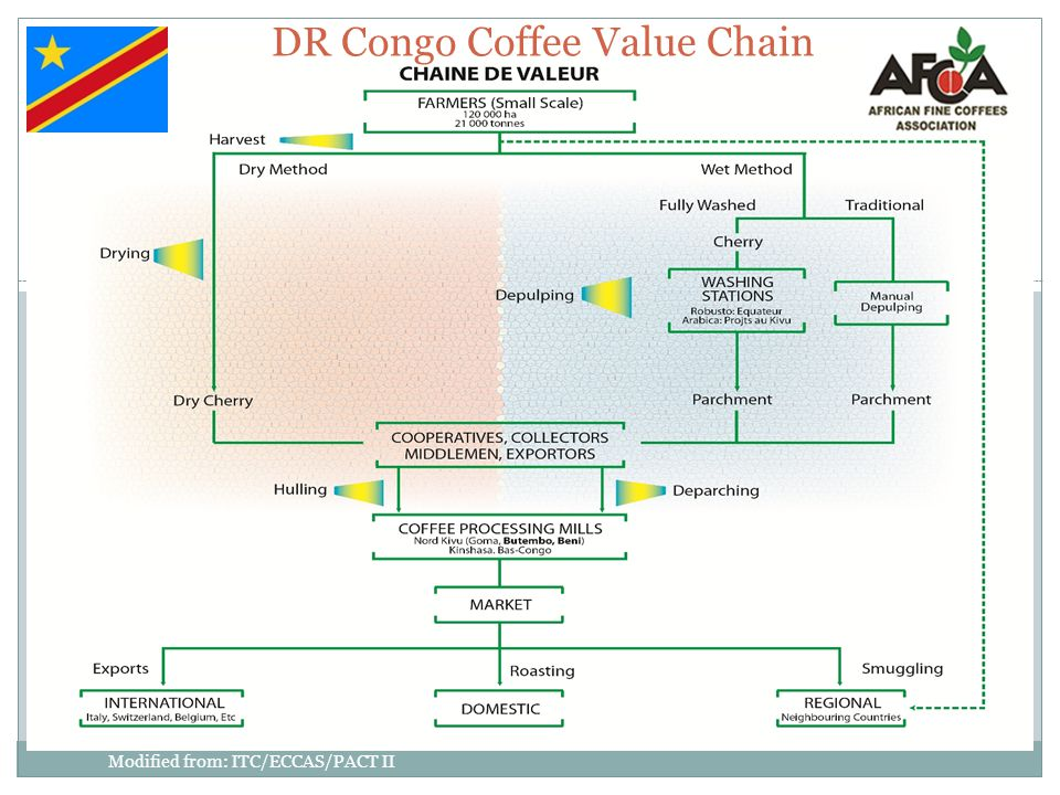 DR Congo Coffee Value Chain