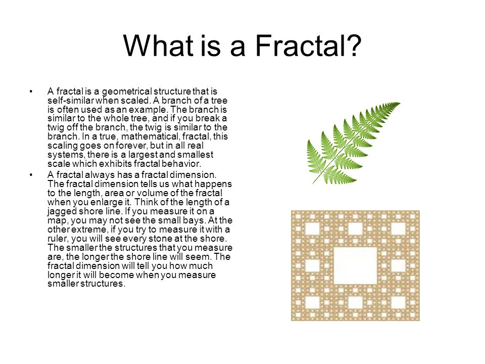 What is a Fractal