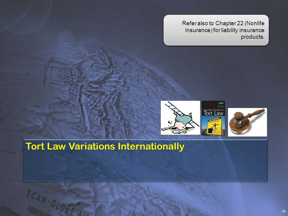 Tort Law Variations Internationally