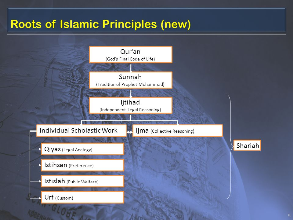 Roots of Islamic Principles (new)