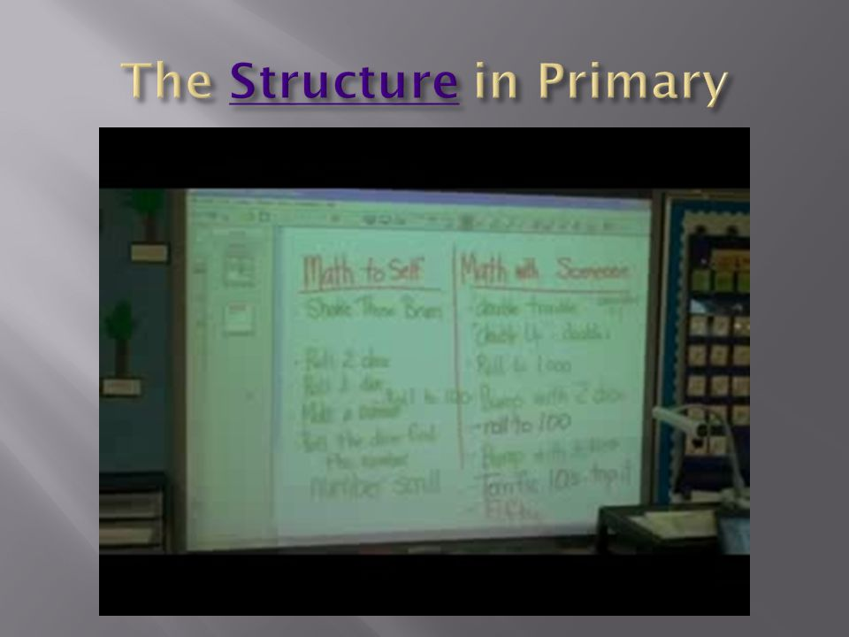 The Structure in Primary