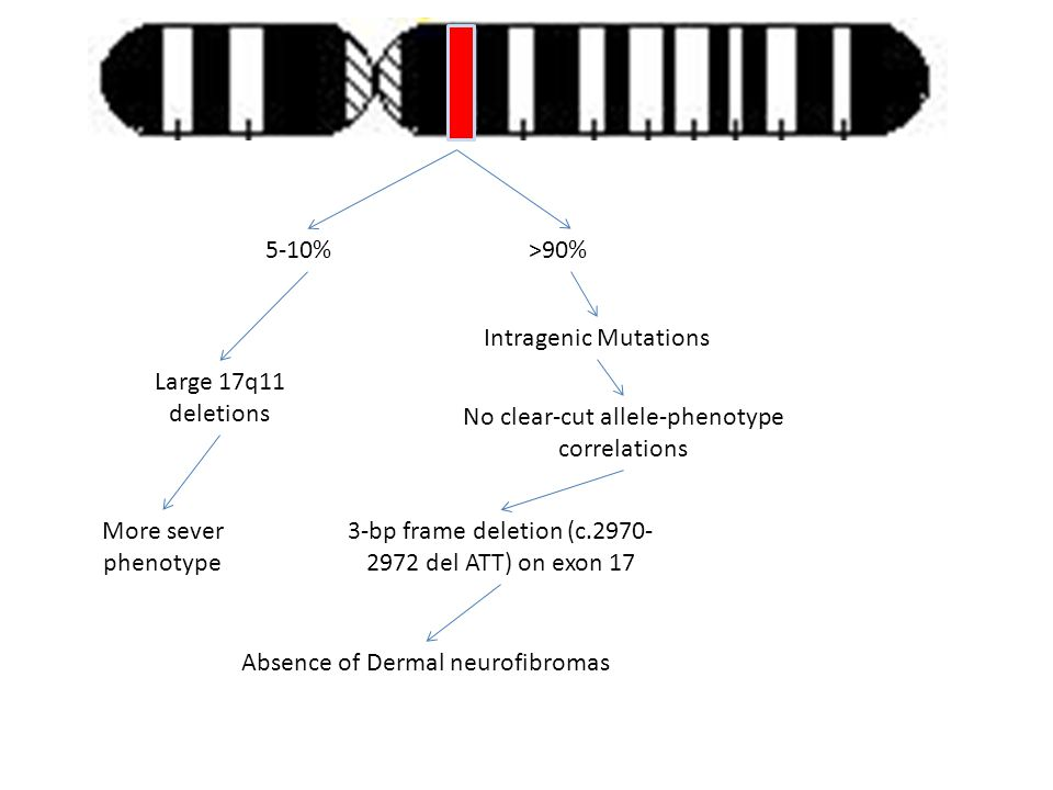 No clear-cut allele-phenotype correlations
