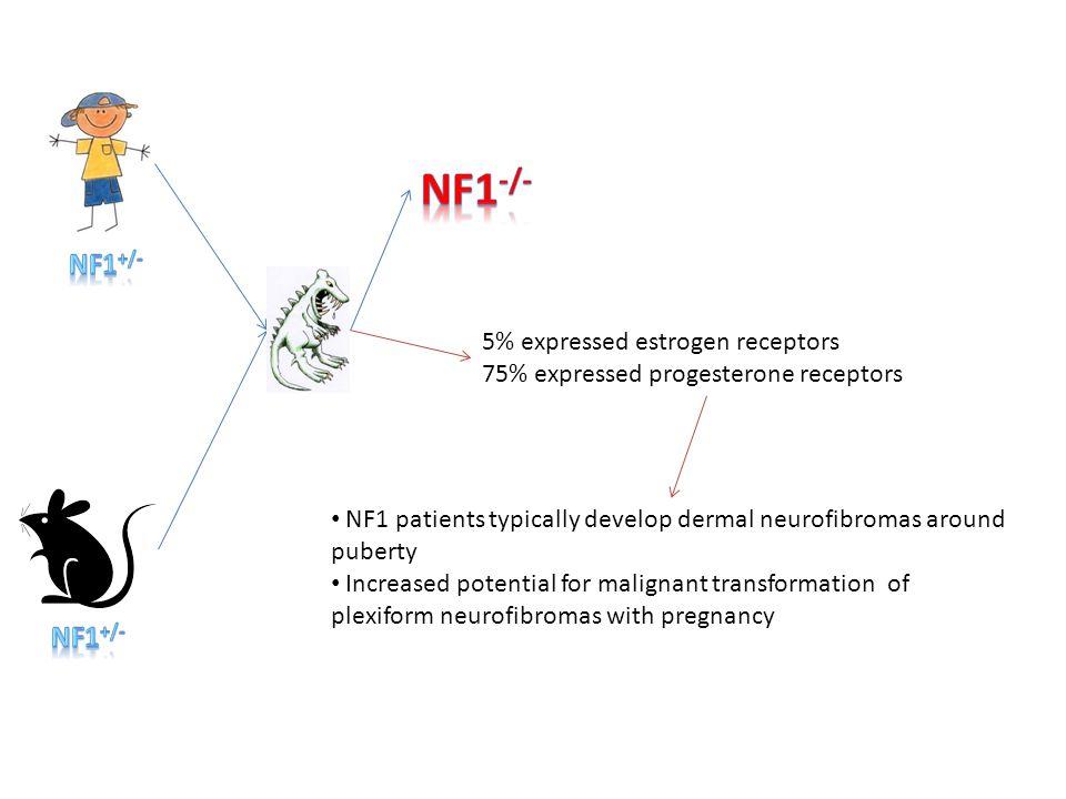NF1-/- NF1+/- NF1+/- 5% expressed estrogen receptors