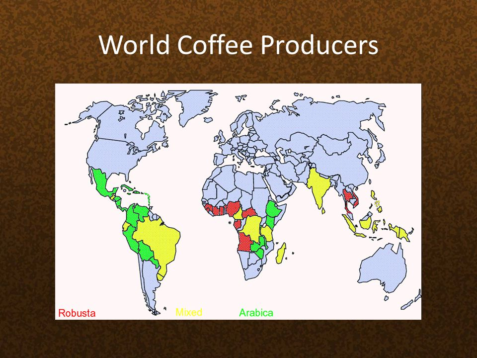World Coffee Producers