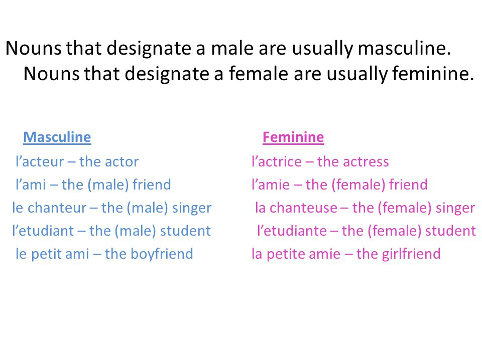 Nouns that designate a male are usually masculine