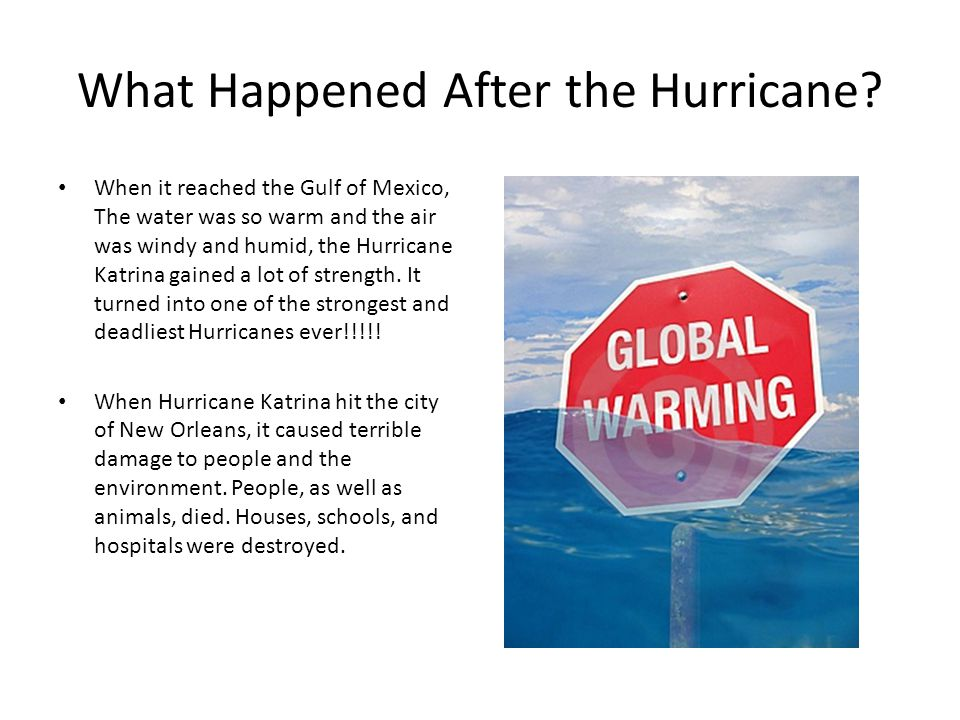 What Happened After the Hurricane