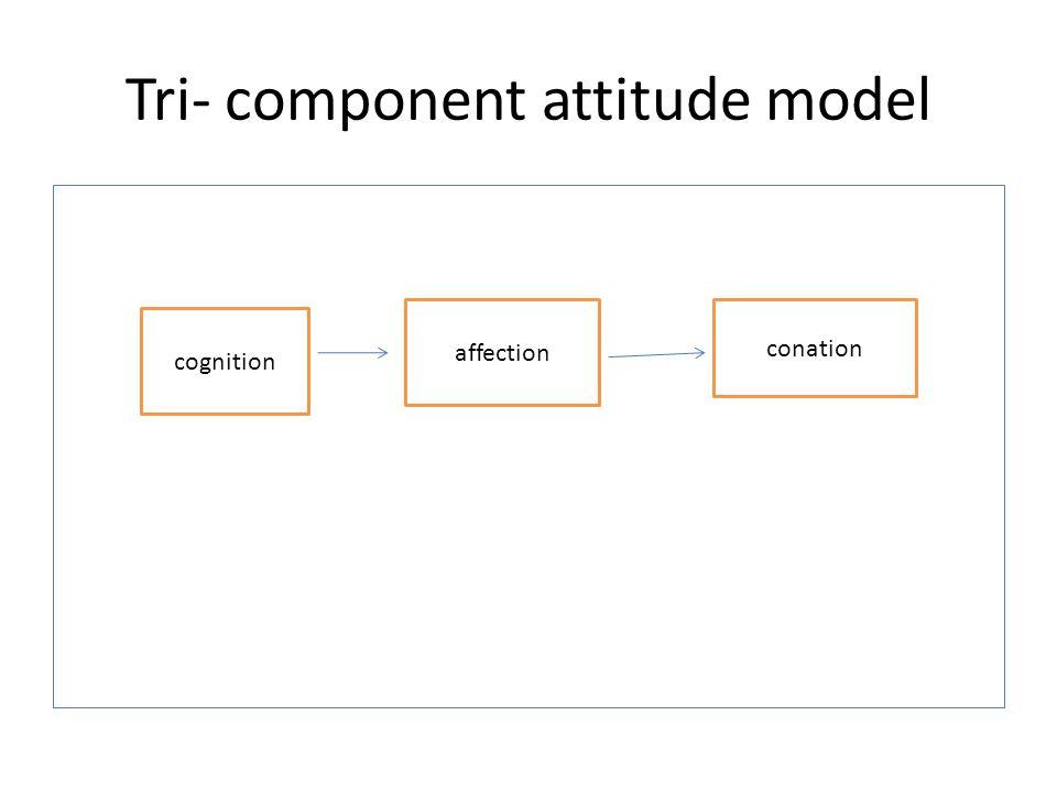 Tri- component attitude model