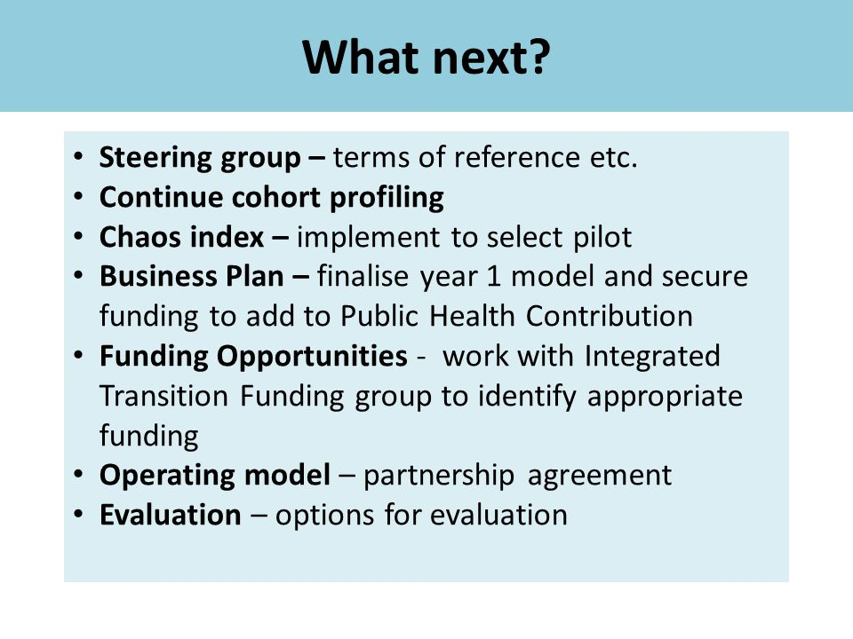 What next Steering group – terms of reference etc.