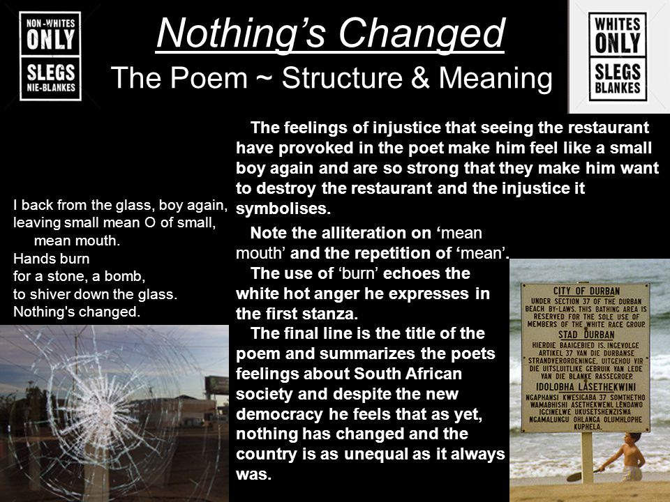The Poem ~ Structure & Meaning