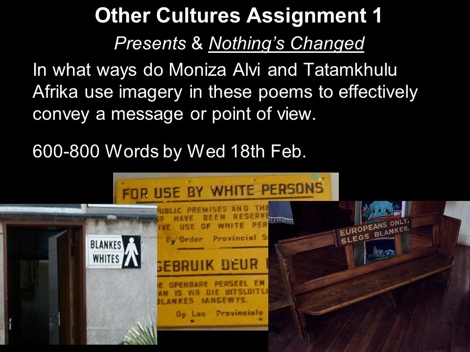 Other Cultures Assignment 1