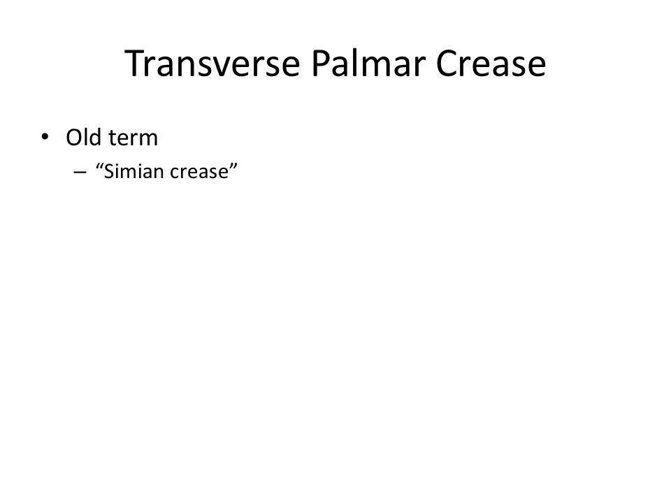 Transverse Palmar Crease