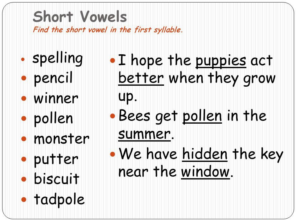 Short Vowels Find the short vowel in the first syllable.