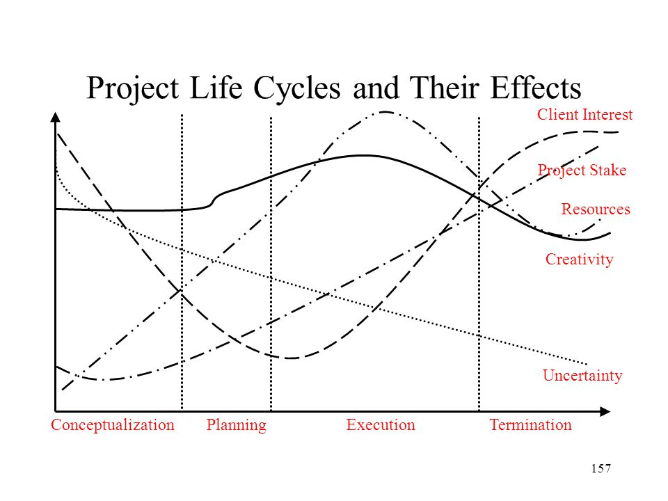 Project Life Cycles and Their Effects