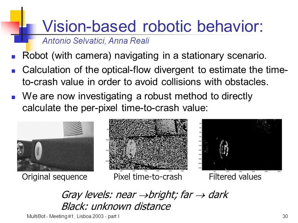 Vision-based robotic behavior: Antonio Selvatici, Anna Reali