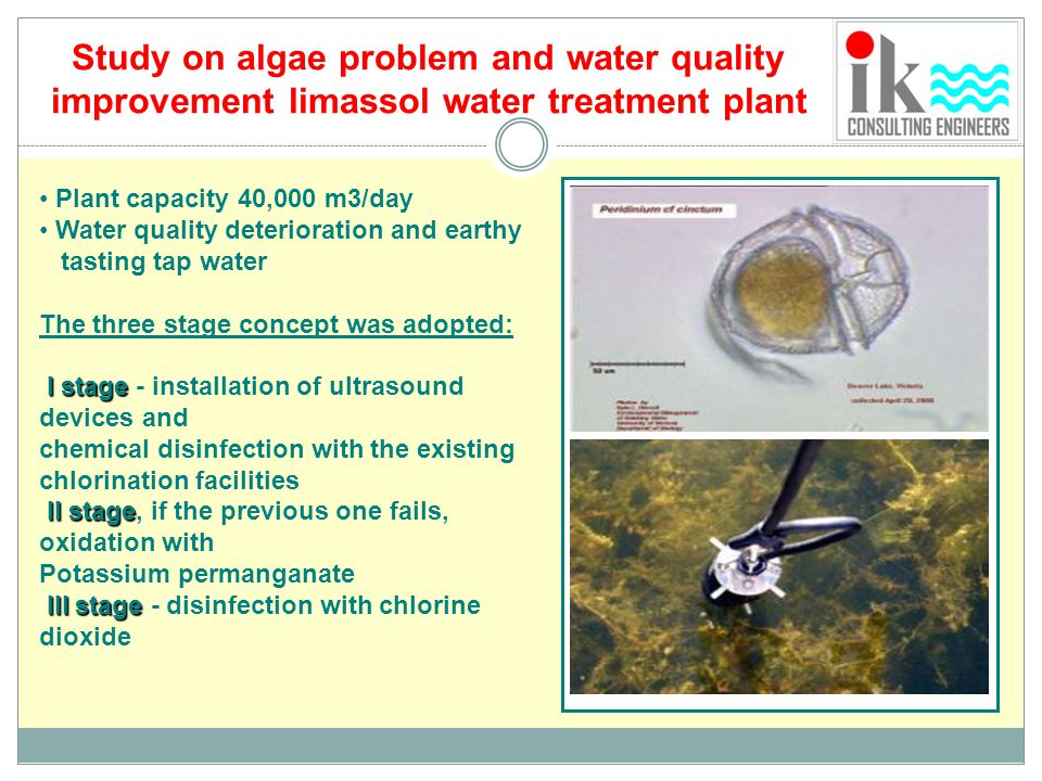 Study on algae problem and water quality improvement limassol water treatment plant