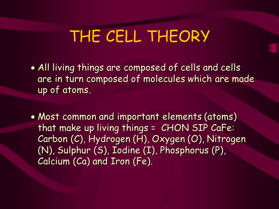 THE CELL THEORY All living things are composed of cells and cells are in turn composed of molecules which are made up of atoms.