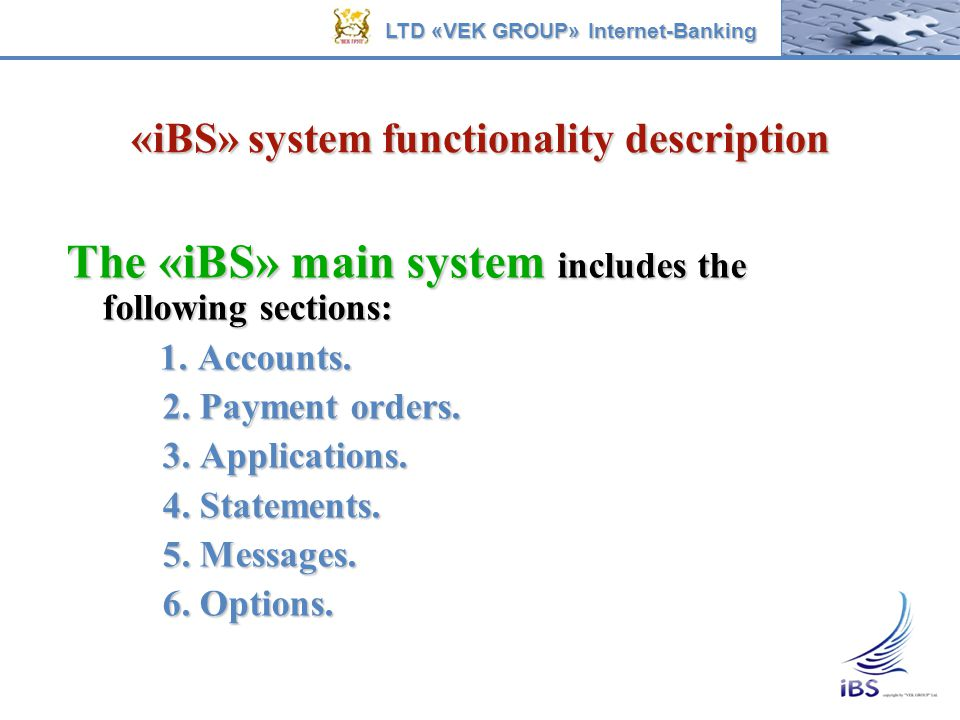 «iBS» system functionality description