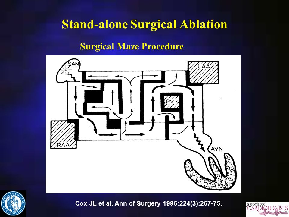 Stand-alone Surgical Ablation
