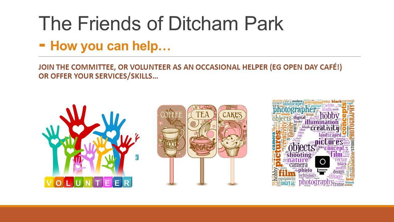 The Friends of Ditcham Park - How you can help…