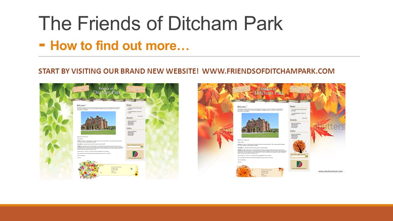 The Friends of Ditcham Park - How to find out more…