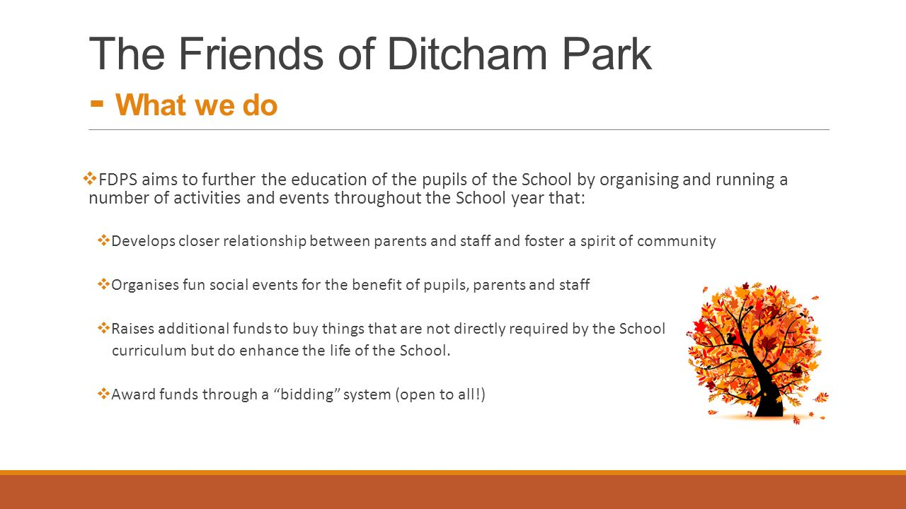 The Friends of Ditcham Park - What we do