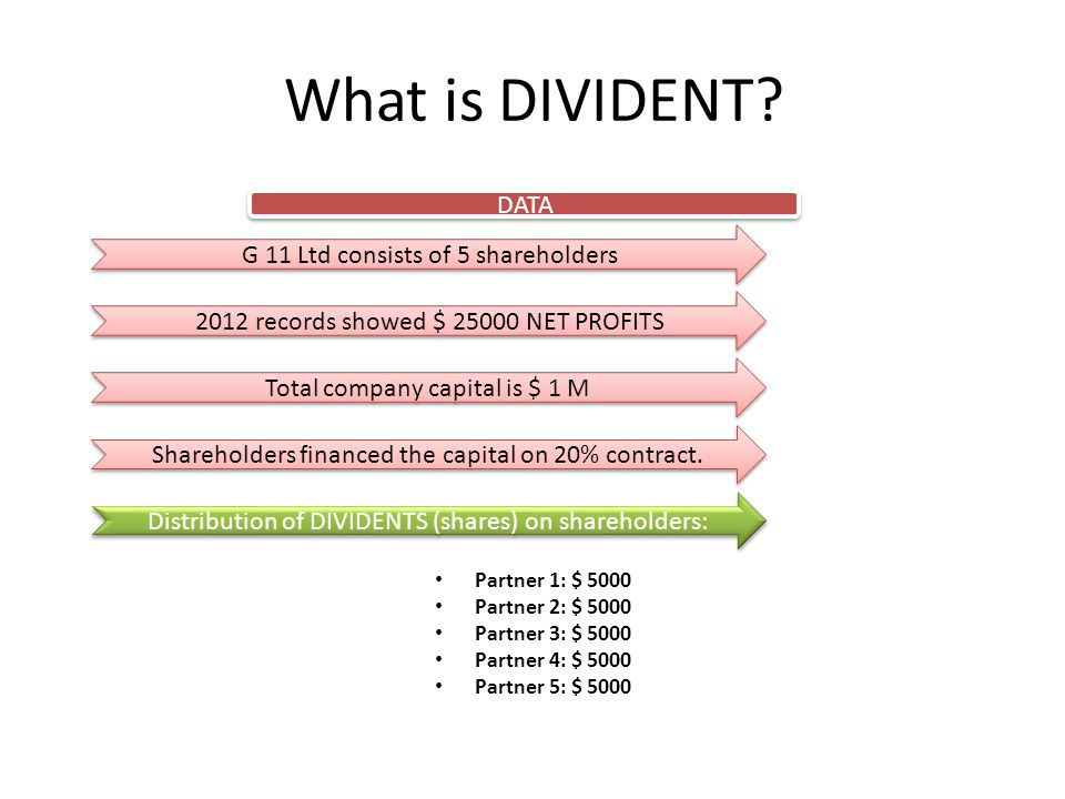 What is DIVIDENT DATA G 11 Ltd consists of 5 shareholders