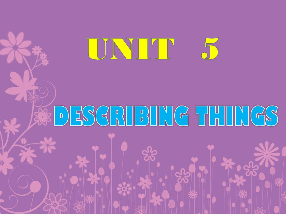 UNIT 5 DESCRIBING THINGS