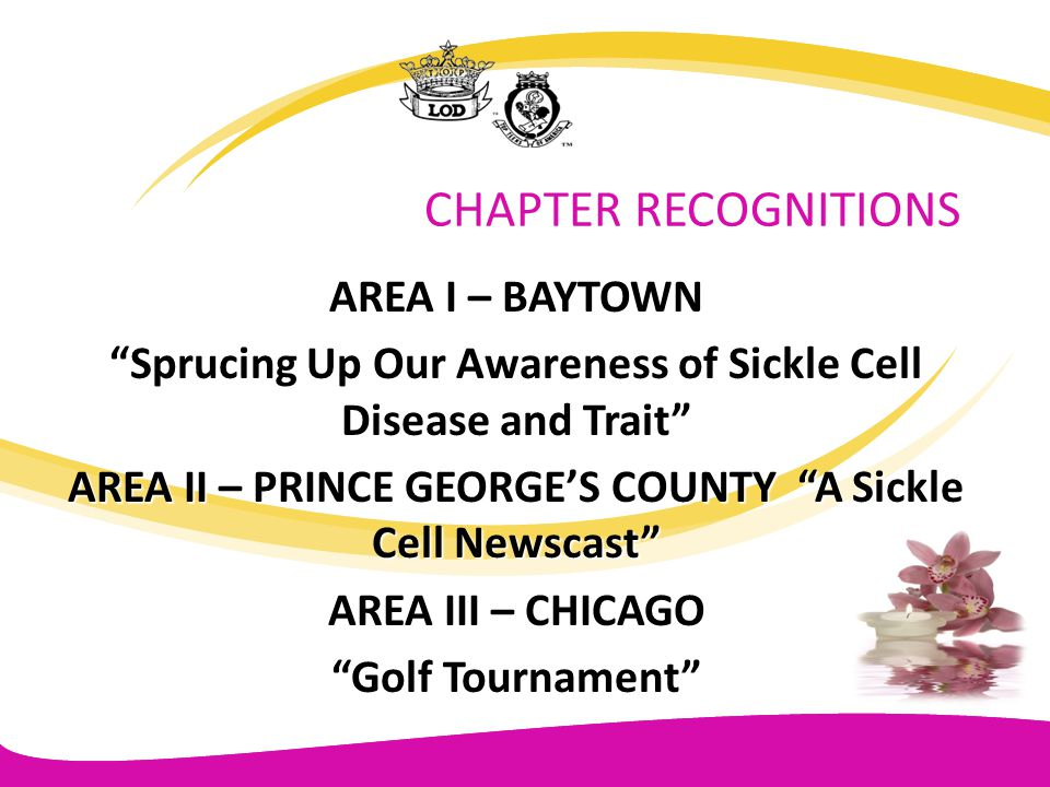 CHAPTER RECOGNITIONS AREA I – BAYTOWN