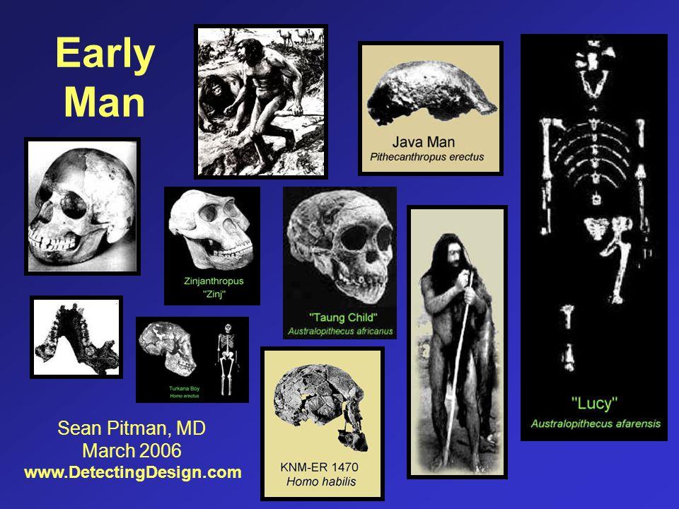 Early Man Sean Pitman, MD March 2006 www.DetectingDesign.com
