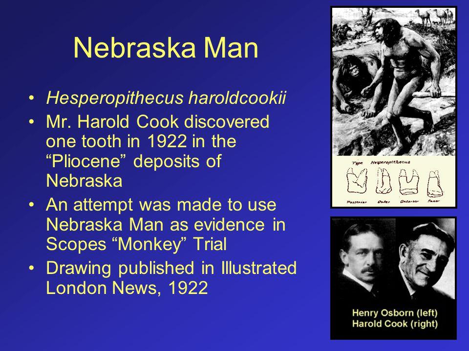 Nebraska Man Hesperopithecus haroldcookii
