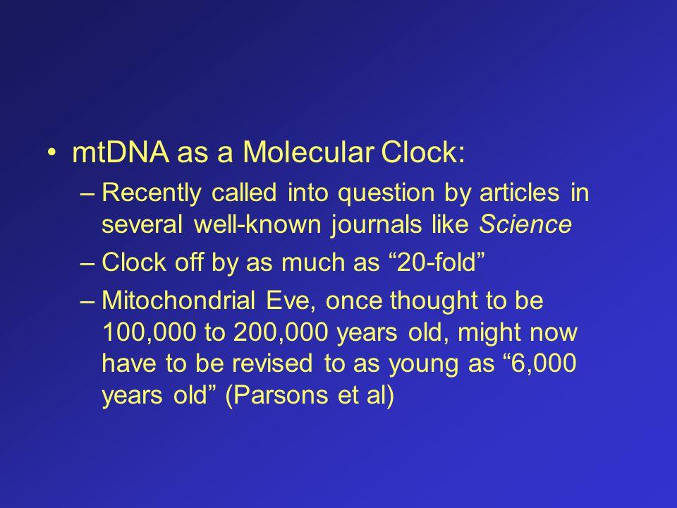 mtDNA as a Molecular Clock: